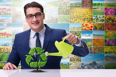The businessman watering plan in recycling concept. Businessman watering plan in recycling concept Stock Photo