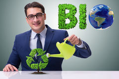 The businessman watering plan in recycling concept. Businessman watering plan in recycling concept Stock Photography