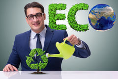 The businessman watering plan in recycling concept. Businessman watering plan in recycling concept Royalty Free Stock Images