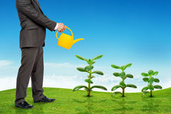 Businessman watering plants Royalty Free Stock Photos