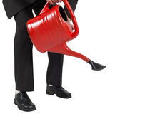 Businessman watering with red can Stock Image