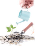 Businessman watering a tree growing out of silver coins on garde Royalty Free Stock Photo