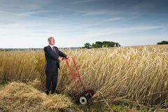 Businessman in Wheat Field. Man in a dark business suit cutting down wheat in a farm field. Metaphor for harvesting the fruits of your labor Stock Photography