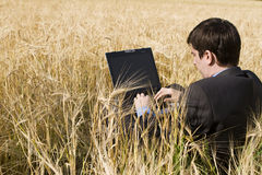 Businessman in wheat field. With notebook Royalty Free Stock Images