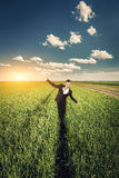 Businessman in a wheat field Royalty Free Stock Photos