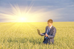 Businessman on a wheat field Royalty Free Stock Images