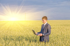 Businessman on a wheat field Stock Photography