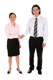 Businessman and woman shaking hands royalty free stock image