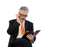 Businessman at work Royalty Free Stock Photo