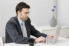 Businessman working on computer Royalty Free Stock Photo