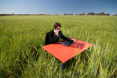 Businessman working in the field. Businessman working remotely from his office in the field, using mobile and wireless technology royalty free stock photo