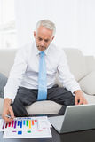Businessman working on graphs and laptop at home Royalty Free Stock Photography