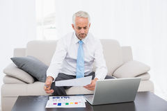 Businessman working on graphs and laptop at home Stock Images