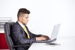 Businessman working at his laptop Royalty Free Stock Image