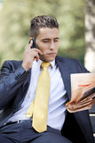 Businessman working at the park Royalty Free Stock Images