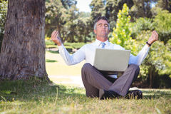 Businessman working in the park Royalty Free Stock Photos