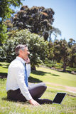 Businessman working in the park Royalty Free Stock Images