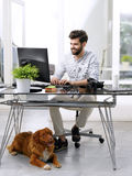 Businessman working at pet-friendly workplace Royalty Free Stock Images