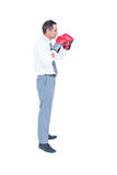 Businessmans fist in a boxing glove Royalty Free Stock Images
