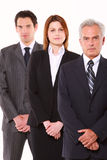 Businessmen and businesswoman Stock Photography