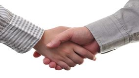 Businessmen and businesswoman shaking hands stock video footage