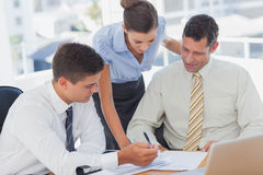 Businessmen and a businesswoman working together Stock Image