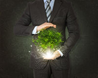 Businessmen hold magical green tree and rays of. Light on dark background stock photography