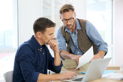 Businessmen at office working on a project Stock Images