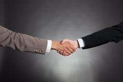 Businessmen shaking hands Royalty Free Stock Image