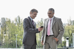 Businessmen using cell phone together outdoors Royalty Free Stock Images