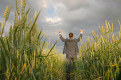 Businessmen in a wheat field. Successful man on the field with hands up Stock Photos