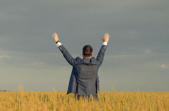 Businessmen in a wheat field. Successful man on the field with hands up Stock Photography
