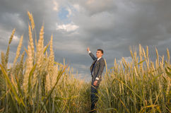 Businessmen in a wheat field. Successful man on the field with right hand up Royalty Free Stock Photos