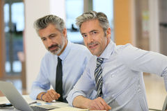 Businessmen working on laptop. Businessmen working in office with laptop Royalty Free Stock Photos