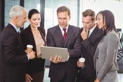 businesspeople κοίταγμα lap-top Στοκ Εικόνες