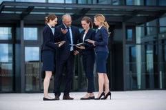 Businesspeople discussing in office premises. Businesspeople standing and discussing in office premises Stock Photography
