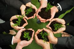 Businesspeople hands with plant and soil Royalty Free Stock Image