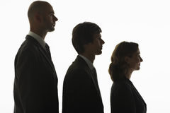 Businesspeople In Row In Height Order. Profile shot of businesspeople standing in row in height order against white background Stock Image