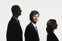 Businesspeople In Row In Height Order. Businesspeople standing in row in height order against white background Stock Photography