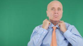 Businessperson Arranging His Tie med den gröna skärmen i bakgrund arkivfoton