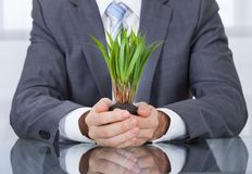 Businessperson with green grass Royalty Free Stock Images