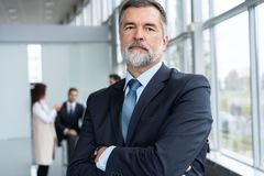 Businessteam in office, Happy Senior Businessman in His Office is standing in front of their team. stock photos