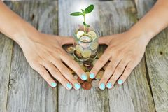 Businesswoman's palms protecting a green plant growing from a jar full of cash money, savings or incomes protection concept royalty free stock photo