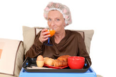 Businesswoman in bed, breakfast Stock Image
