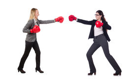 The businesswoman in boxing concept on white Royalty Free Stock Image