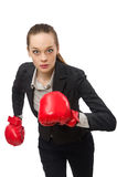 Businesswoman with boxing gloves isolated on white Stock Image