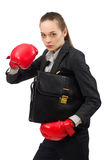 Businesswoman with boxing gloves isolated on white Royalty Free Stock Images