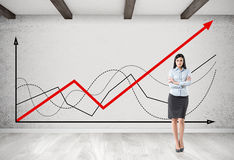 Businesswoman with brown hair near graphs Stock Images
