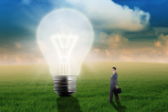 Businesswoman with bulb on the meadow Royalty Free Stock Photo