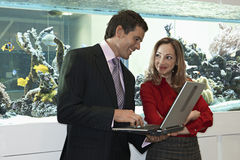 Businesswoman and businessman standing beside fish tank, man using laptop, smiling Royalty Free Stock Image